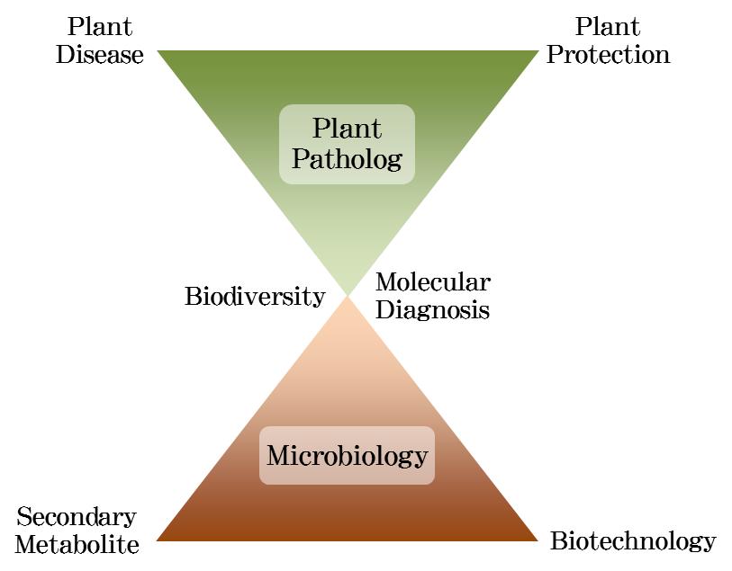 Programs of Study in Plant Pathology & Plant-Microbe ...